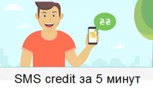 Займ по СМС на Киви кошелек без звонков оператора