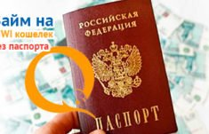 получить займ на киви кошелек срочно без паспортных данных